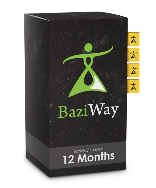 BaziWay Business 12 Months