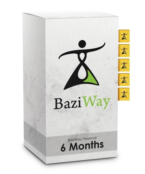 BaziWay Personal 6 Months